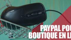 PayPal : une nécessité pour ma boutique en ligne ?
