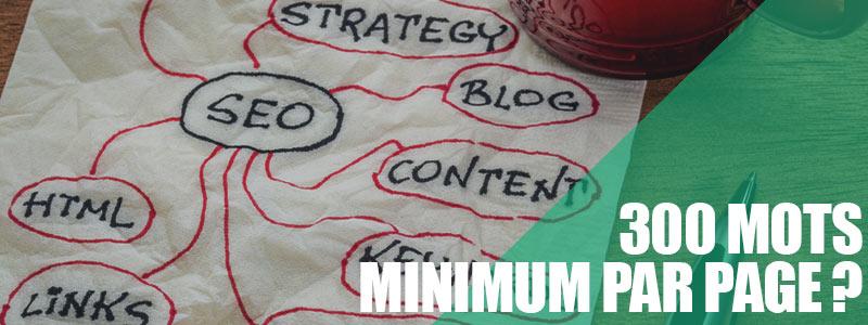 300 mots minimum pour être bien référencé dans Google ?