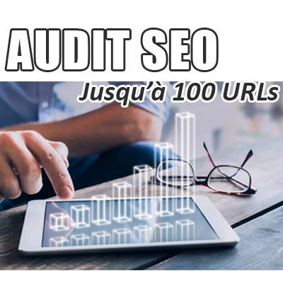 Audit SEO de votre site jusqu'à 100 URLs