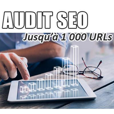 Audit SEO de votre site jusqu'à 1 000 URLs