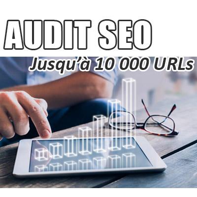 Audit SEO de votre site jusqu'à 10 000 URLs